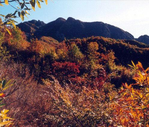 【hr去哪儿第3季】10月31日-11月1日天津爬山赏红叶(蓟县九山顶俩日游